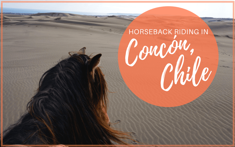 Horseback Riding Concon